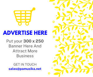 ADVERTISE HERE2