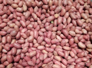 Nzungu Peanuts for sale