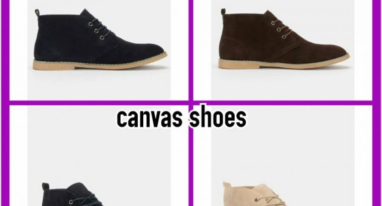 Smart Canvas shoes