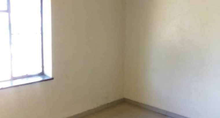 Avenues flat for rent