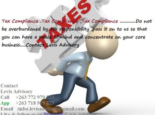Accounting Tax Advisory Services