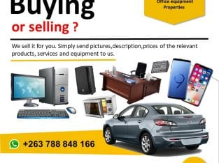 Zimba Auctions